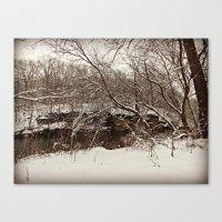 Snowy Creek View  Canvas Print