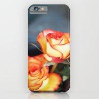 Orange Rose iPhone 6 Slim Case
