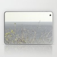 Branches At The Sea Laptop & iPad Skin