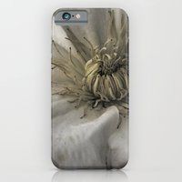 As a Spider iPhone 6 Slim Case