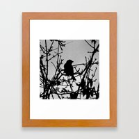Silhouette Bird.  Framed Art Print
