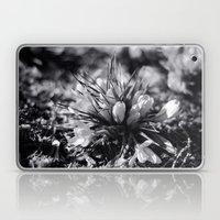 Sunlit Crocus In Black A… Laptop & iPad Skin
