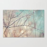 Cool Down Canvas Print