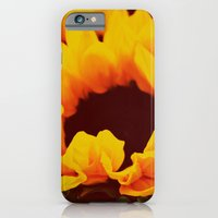 iPhone & iPod Case featuring Sunflower by catdossett