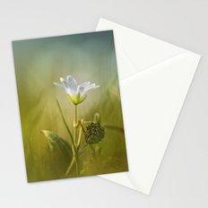 Cerastium fontanum subsp. vulgare  Stationery Cards