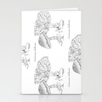 Cortinarius Bulliardii // Hand Drawn Fungi Series Stationery Cards