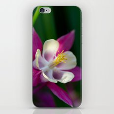 Columbine iPhone & iPod Skin