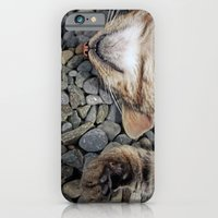 Ecstatic Cat iPhone 6 Slim Case