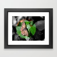 Butterfly Moments Framed Art Print