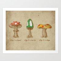 Mario Mycology Art Print