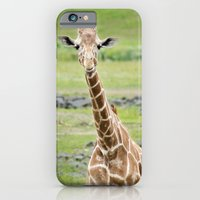Smiling Giraffe iPhone 6 Slim Case