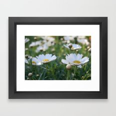 Fresh morning 0797 Framed Art Print