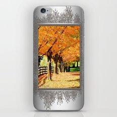 Fall Foliage iPhone & iPod Skin
