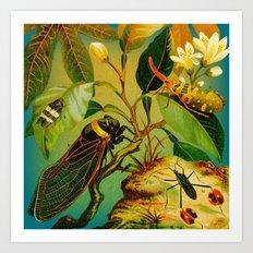 Vintage Cicada  Art Print