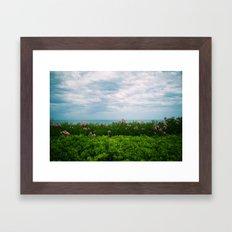 orizzonte fiorito Framed Art Print