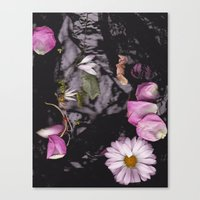 Black/Pink Canvas Print