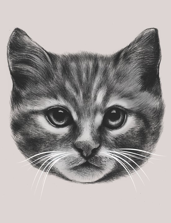 Everybody wants to be a Cat (MONOTONE) Art Print
