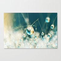Sea Blue & Sand Cactus D… Canvas Print