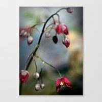Only for you Canvas Print