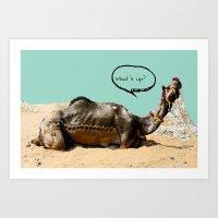 Pushkar fair chillout Art Print