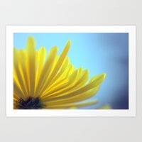 Yellow Chrysanthemum 301 Art Print