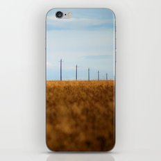 Perspective 4956 iPhone & iPod Skin