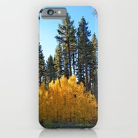 Fall Foliage iPhone 6 Slim Case