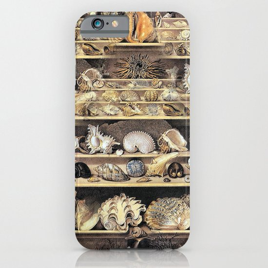 Vintage Shell Collection iPhone & iPod Case