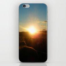 Summer Nights iPhone & iPod Skin