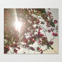 Bright Morning Canvas Print