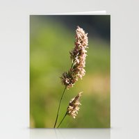 Mountain Grass Stationery Cards