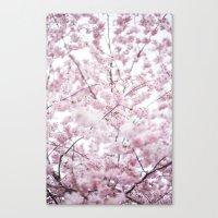 Sakura Bloom. Canvas Print