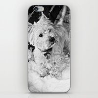 This Is Snow More Fun iPhone & iPod Skin