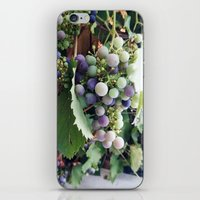 grape iPhone & iPod Skin