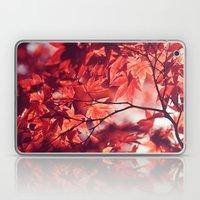 Autumn Reds Laptop & iPad Skin
