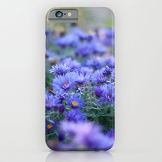 Sea of Asters Slim Case iPhone 6s