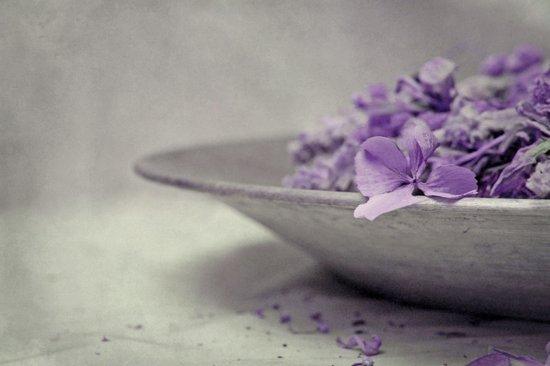 gray & violet Art Print
