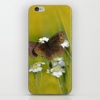 Summery Butterflies on Gold iPhone & iPod Skin