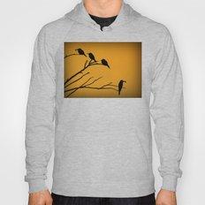 European Bee-Eater Birds  Hoody