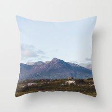 Connemara  - Horse and Mountains Throw Pillow