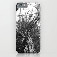 black and white forest iPhone 6 Slim Case