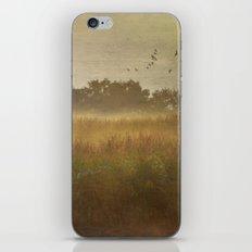Misty Meadow iPhone & iPod Skin