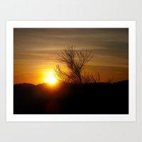 Awakening Sun Art Print