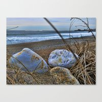 Shells and Beach Stones Canvas Print
