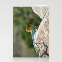 Collared Lizard Stationery Cards