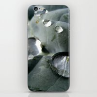 Drops World iPhone & iPod Skin