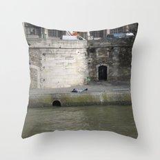 Naptime in Paris Throw Pillow