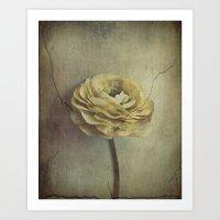 Vintage Blossoms Art Print