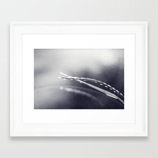 Evening Light in Black and White Framed Art Print