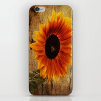 Vintage Sunflower Framed iPhone & iPod Skin